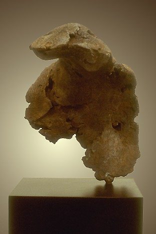 Torso I - Left Side View